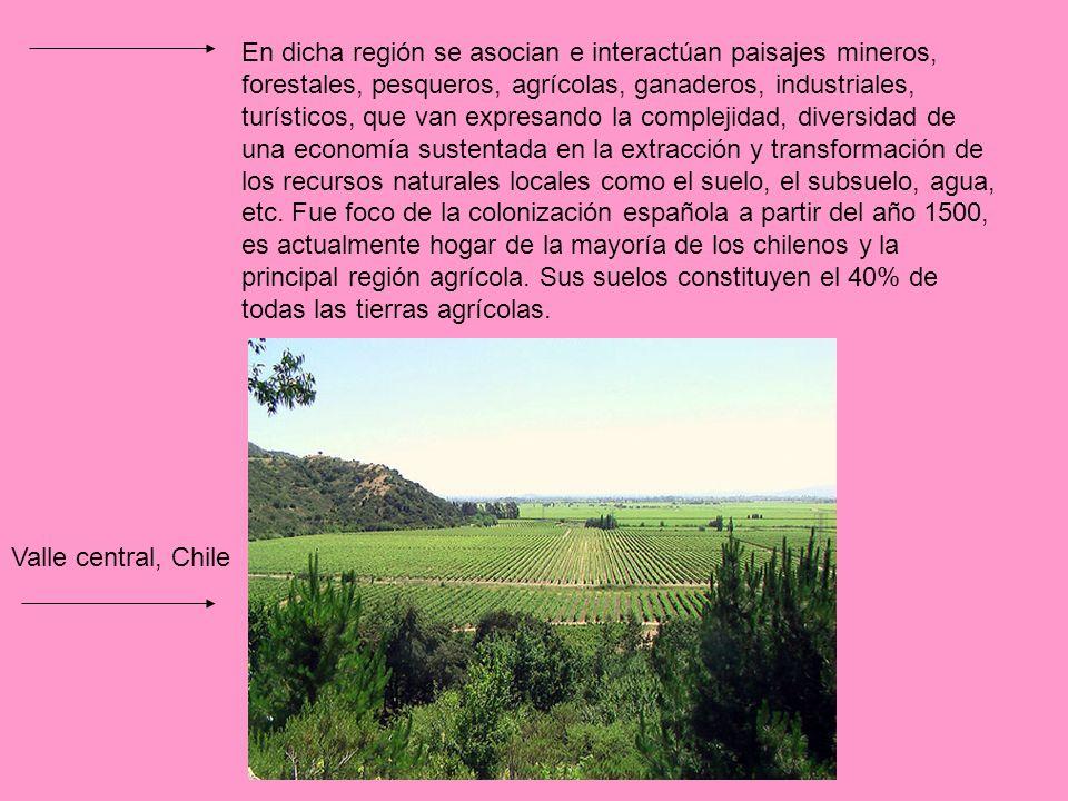 Las zonas vitícolas conocidas de Chile se ubican en el Valle entre los Andes y el pacífico, la topografía de estrella llanura, y se la asocian a pequeños valles y fertilidad de los suelos, han favorecido el cultivo de la vid en la región.