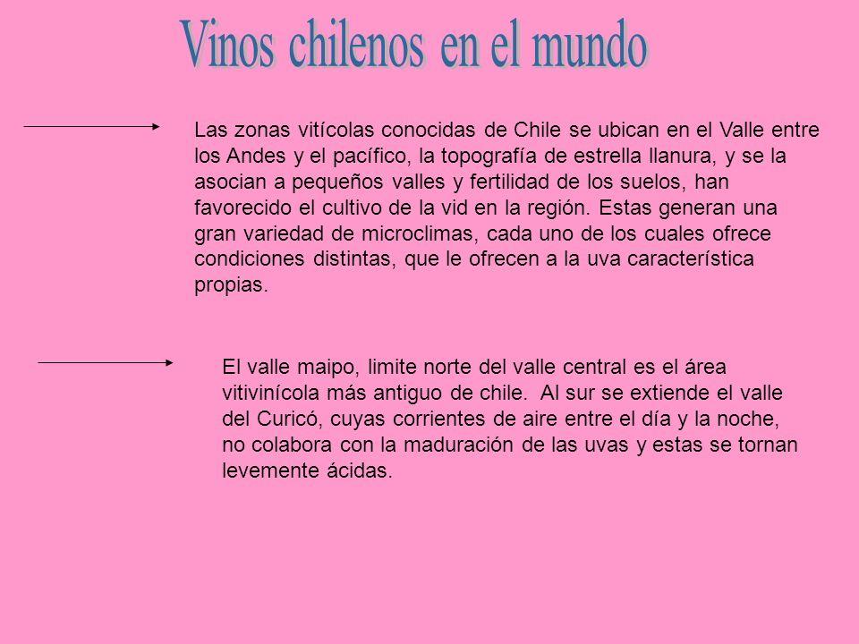 Las zonas vitícolas conocidas de Chile se ubican en el Valle entre los Andes y el pacífico, la topografía de estrella llanura, y se la asocian a peque