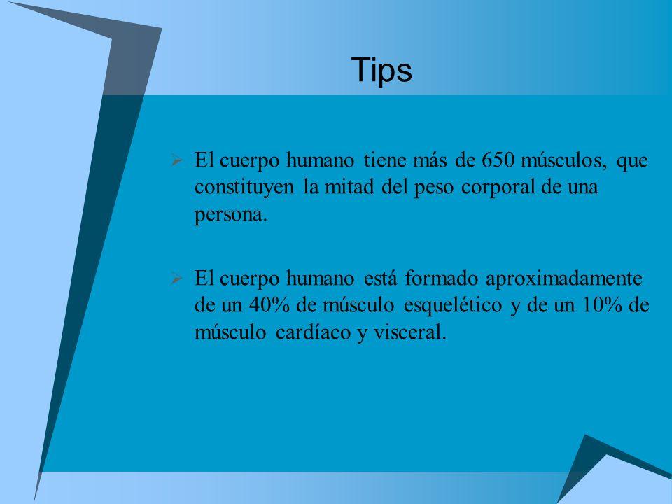 Tips El cuerpo humano tiene más de 650 músculos, que constituyen la mitad del peso corporal de una persona. El cuerpo humano está formado aproximadame