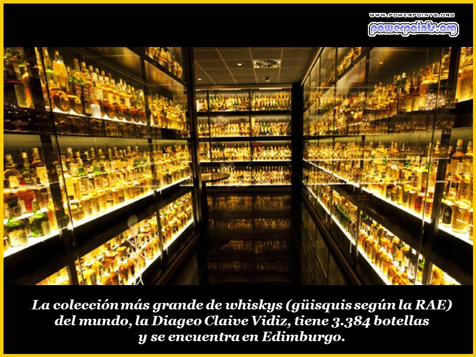 La colección más grande de whiskys (güisquis según la RAE) del mundo, la Diageo Claive Vidiz, tiene 3.384 botellas y se encuentra en Edimburgo.