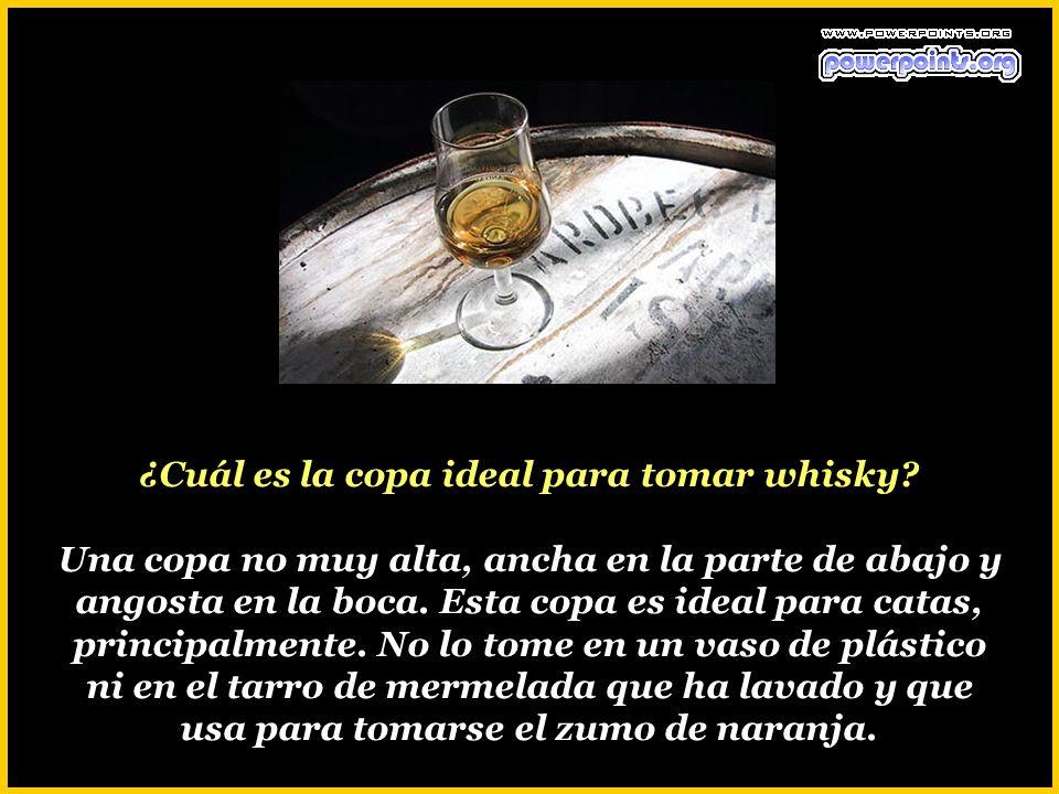 ¿Se pueden hacer cócteles con whisky? Por supuesto. Hay varios famosos: El whisky sour, por ejemplo, que se hace normalmente con dos shots de escocés,