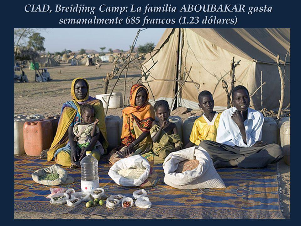 CIAD, Breidjing Camp: La familia ABOUBAKAR gasta semanalmente 685 francos (1.23 dólares)