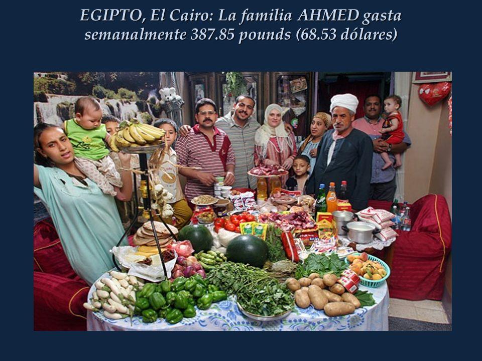 EGIPTO, El Cairo: La familia AHMED gasta semanalmente 387.85 pounds (68.53 dólares)