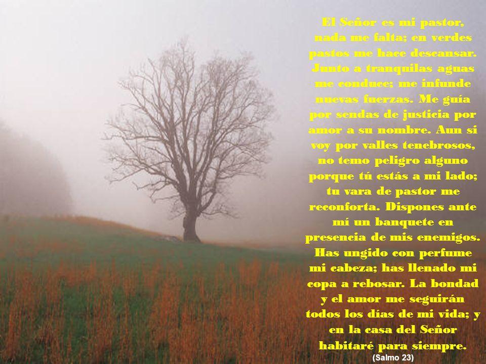 ¡Que el Dios todopoderoso te bendiga e ilumine el sendero de tu vida siempre! Dr. & Mrs. Víctor T. Reyes, MS, PhD www.iglesiadelatrinidad.com ¡No bast