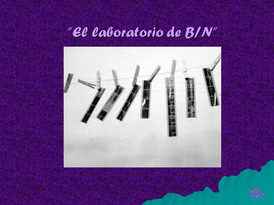 El laboratorio de B/N El laboratorio de B/N