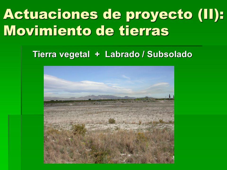 Actuaciones de proyecto (II): Movimiento de tierras Tierra vegetal + Labrado / Subsolado
