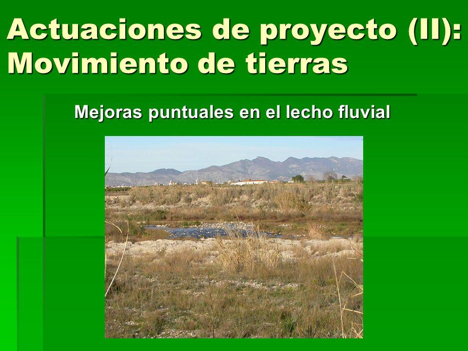 Actuaciones de proyecto (II): Movimiento de tierras Mejoras puntuales en el lecho fluvial