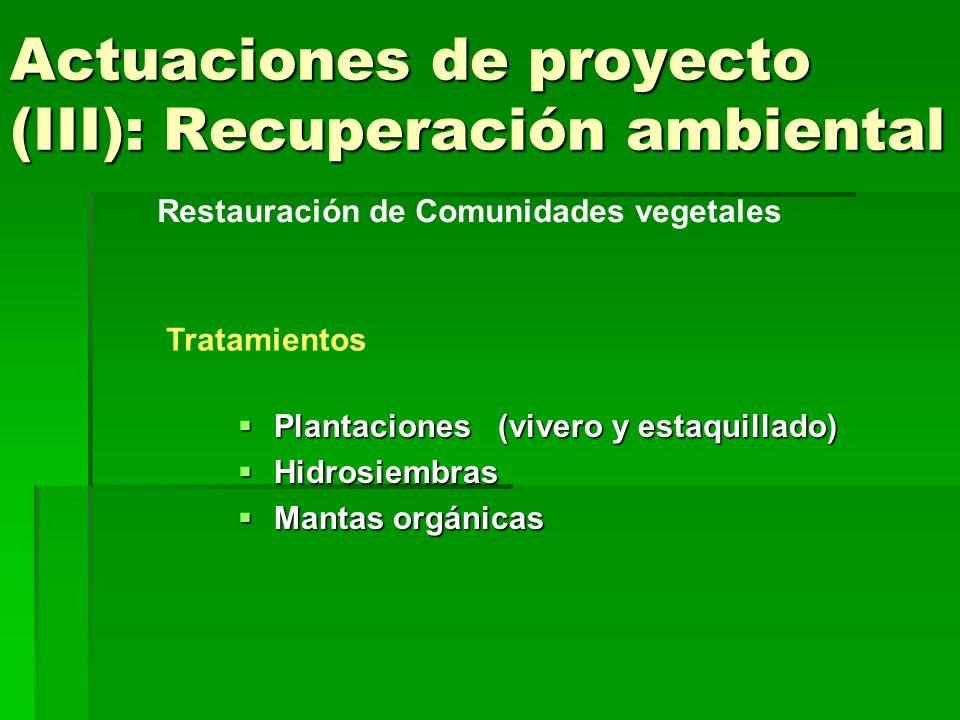 Actuaciones de proyecto (III): Recuperación ambiental Plantaciones (vivero y estaquillado) Plantaciones (vivero y estaquillado) Hidrosiembras Hidrosie