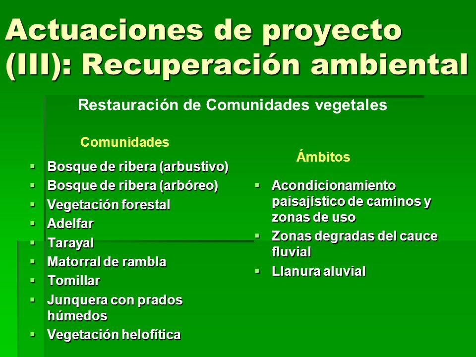 Actuaciones de proyecto (III): Recuperación ambiental Acondicionamiento paisajístico de caminos y zonas de uso Restauración de Comunidades vegetales Actual Proyecto