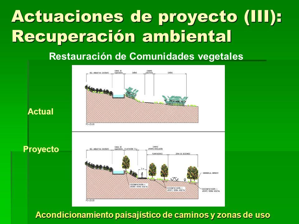 Actuaciones de proyecto (III): Recuperación ambiental Acondicionamiento paisajístico de caminos y zonas de uso Restauración de Comunidades vegetales A