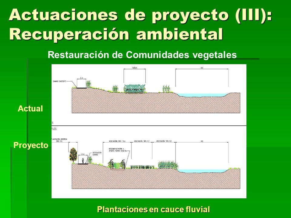 Actuaciones de proyecto (III): Recuperación ambiental Plantaciones en cauce fluvial Restauración de Comunidades vegetales Actual Proyecto