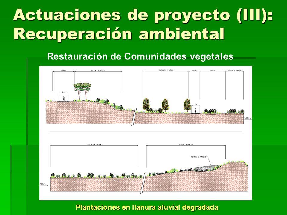 Actuaciones de proyecto (III): Recuperación ambiental Creación de lagunas – Ubicación