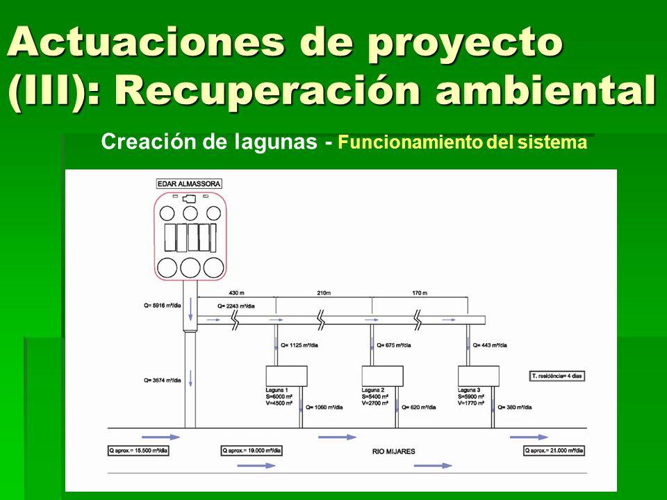 Actuaciones de proyecto (III): Recuperación ambiental Creación de lagunas - Sección