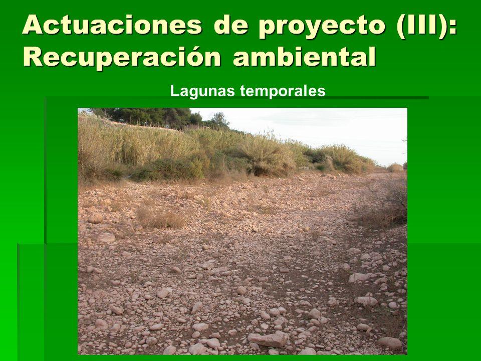 Actuaciones de proyecto (III): Recuperación ambiental Lagunas temporales