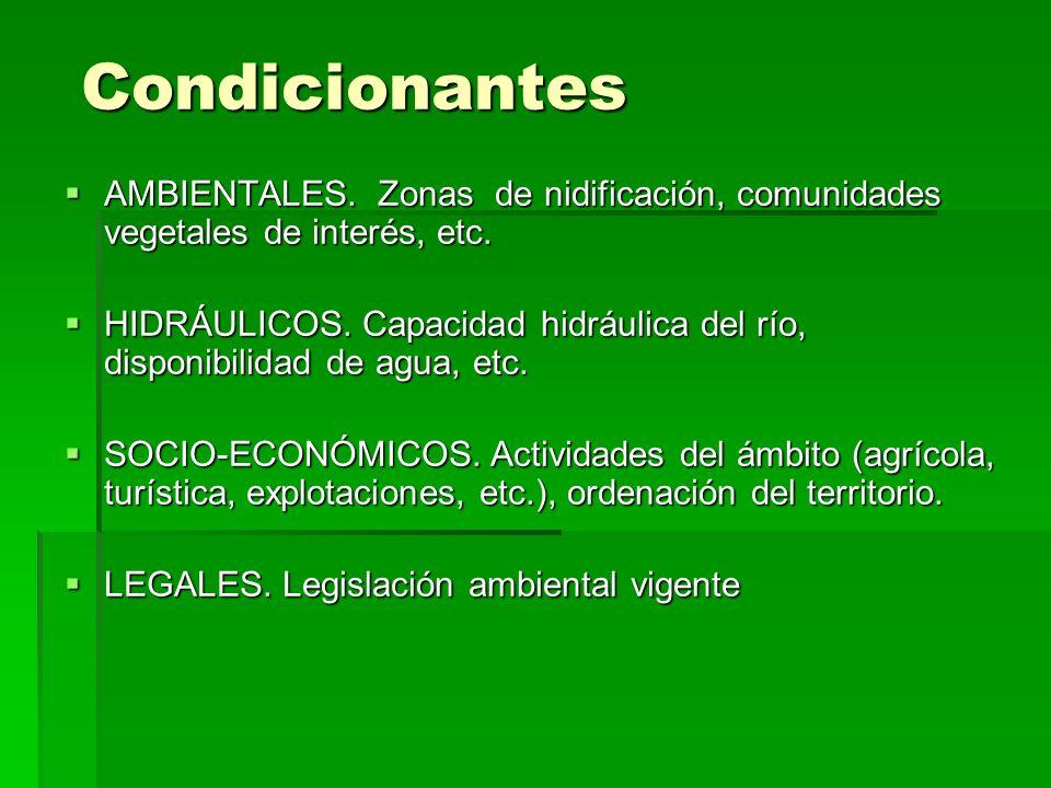 Condicionantes AMBIENTALES. Zonas de nidificación, comunidades vegetales de interés, etc. AMBIENTALES. Zonas de nidificación, comunidades vegetales de