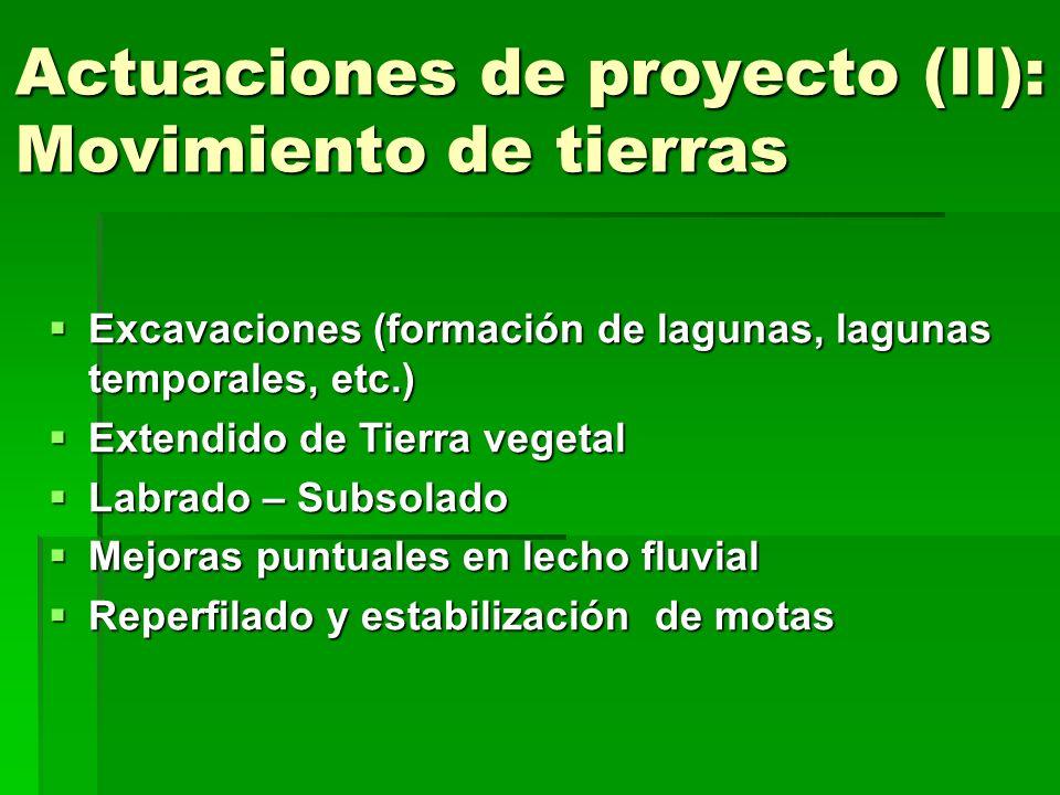 Actuaciones de proyecto (II): Movimiento de tierras Excavaciones (formación de lagunas, lagunas temporales, etc.) Excavaciones (formación de lagunas,