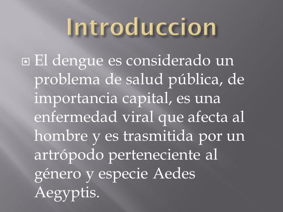 El dengue es considerado un problema de salud pública, de importancia capital, es una enfermedad viral que afecta al hombre y es trasmitida por un artrópodo perteneciente al género y especie Aedes Aegyptis.