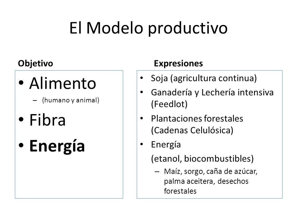 El Modelo productivo Objetivo Alimento – (humano y animal) Fibra Energía Expresiones Soja (agricultura continua) Ganadería y Lechería intensiva (Feedl
