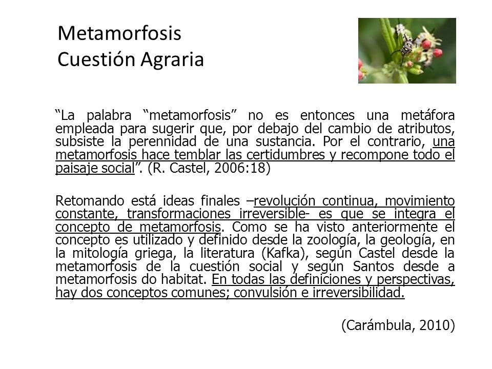 Metamorfosis Cuestión Agraria La palabra metamorfosis no es entonces una metáfora empleada para sugerir que, por debajo del cambio de atributos, subsiste la perennidad de una sustancia.