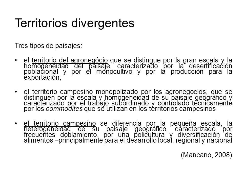 Territorios divergentes Tres tipos de paisajes: el territorio del agronegócio que se distingue por la gran escala y la homogeneidad del paisaje, carac