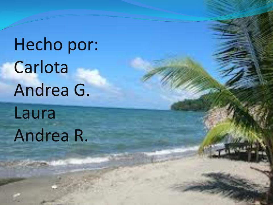 Hecho por: Carlota Andrea G. Laura Andrea R.