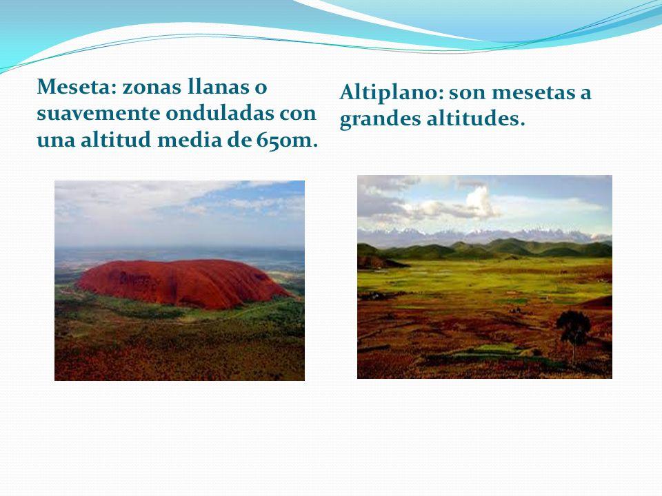 Meseta: zonas llanas o suavemente onduladas con una altitud media de 650m. Altiplano: son mesetas a grandes altitudes.