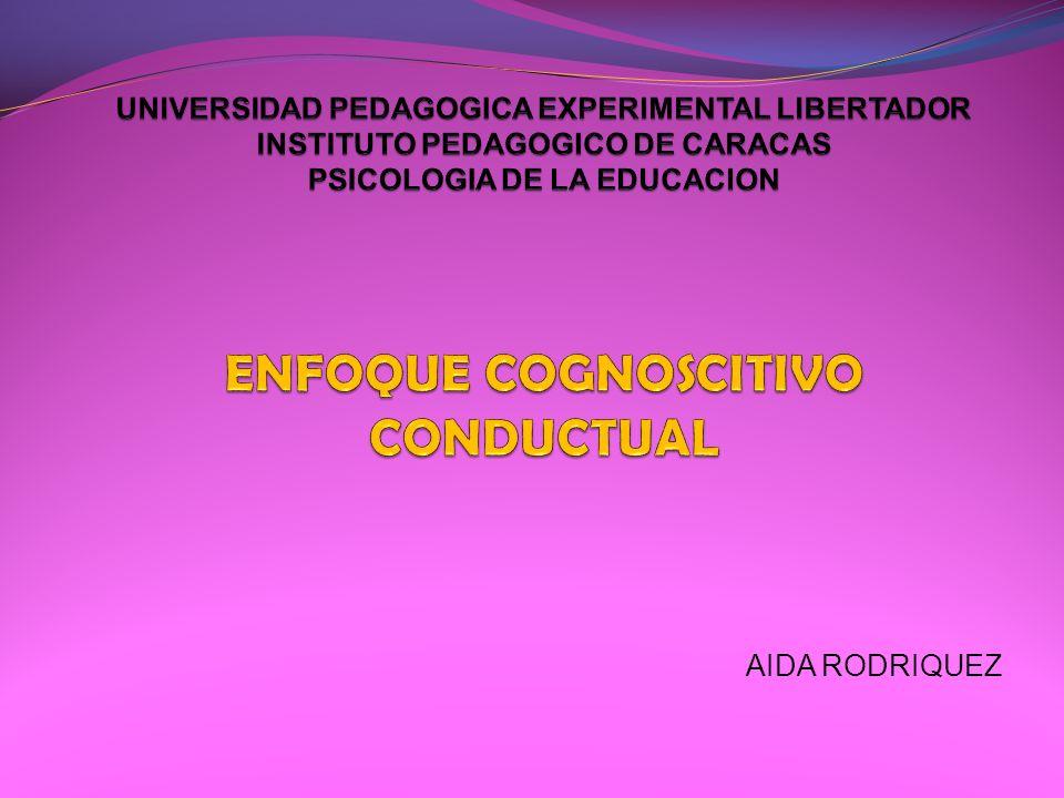 AIDA RODRIQUEZ