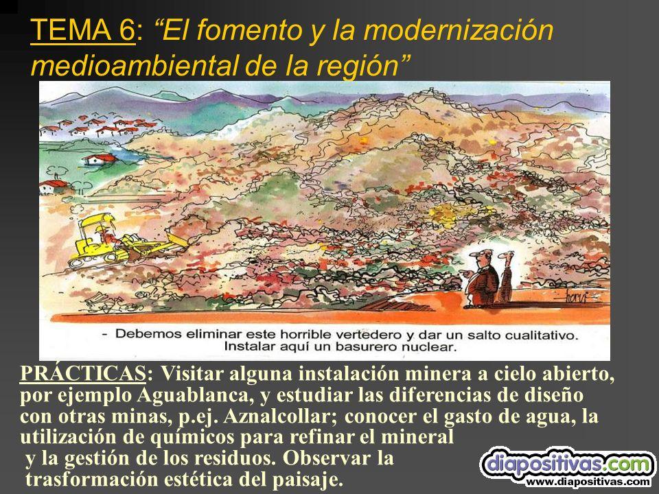 TEMA 6: El fomento y la modernización medioambiental de la región PRÁCTICAS: Visitar alguna instalación minera a cielo abierto, por ejemplo Aguablanca, y estudiar las diferencias de diseño con otras minas, p.ej.