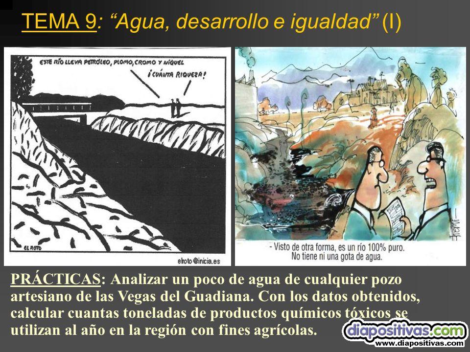 TEMA 9: Agua, desarrollo e igualdad (I) PRÁCTICAS: Analizar un poco de agua de cualquier pozo artesiano de las Vegas del Guadiana.