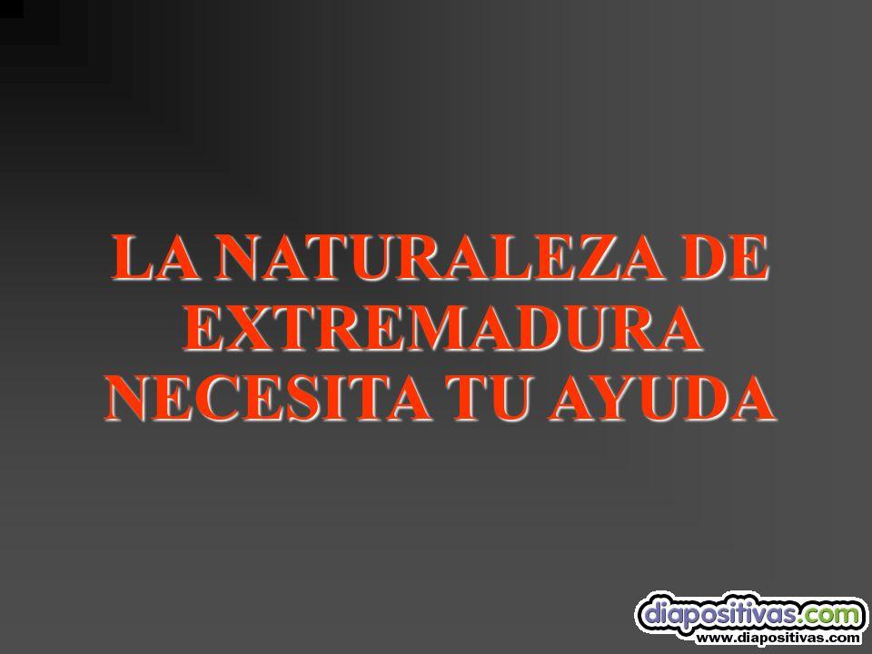LA NATURALEZA DE EXTREMADURA NECESITA TU AYUDA