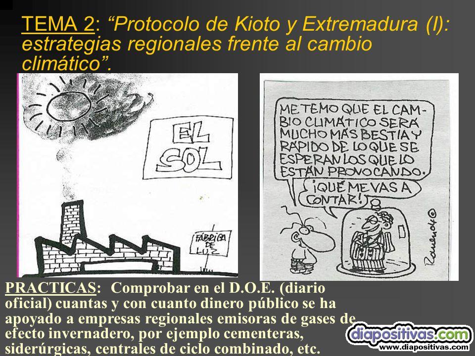 TEMA 2: Protocolo de Kioto y Extremadura (I): estrategias regionales frente al cambio climático.