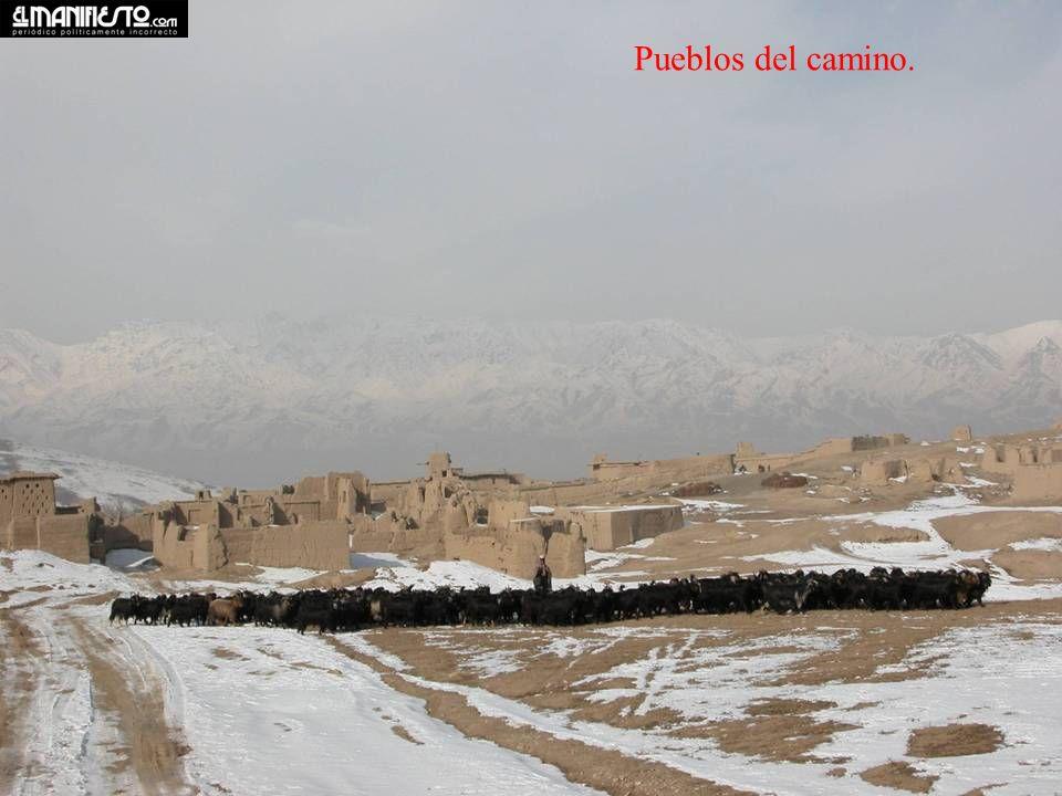 Los resultados de la guerra. Palacio en Kabul