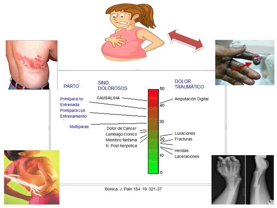 C ONSECUENCIAS DEL TRABAJO DE PARTO Madre: Stress aumento del consumo de O 2, Liberación de catecolaminas= PA, Liberación de catecolaminas= PA, perfusión uteroplacentaria perfusión uteroplacentaria Hiperventilación + alcalosis respiratoria.