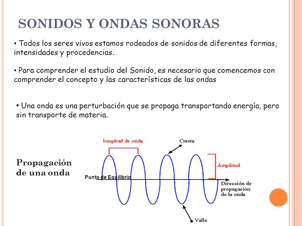 Elementos que se pueden distinguir en una onda: Cresta: es la parte más elevada de una onda.