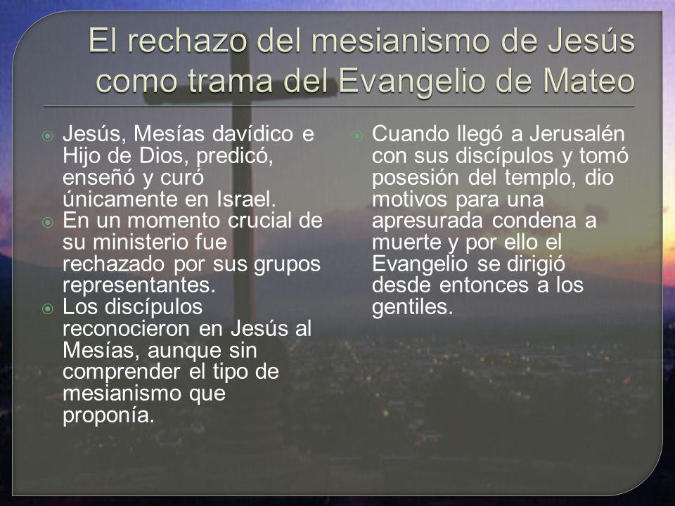 Jesús, Mesías davídico e Hijo de Dios, predicó, enseñó y curó únicamente en Israel.