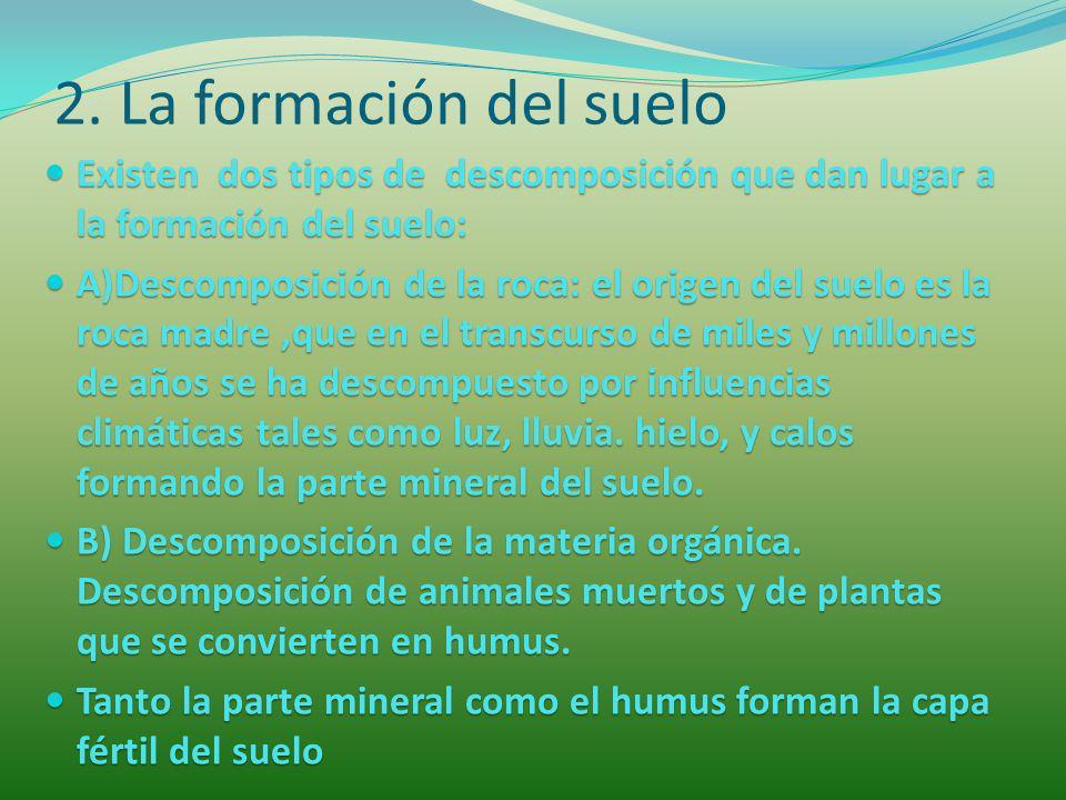 2. La formación del suelo Existen dos tipos de descomposición que dan lugar a la formación del suelo: Existen dos tipos de descomposición que dan luga