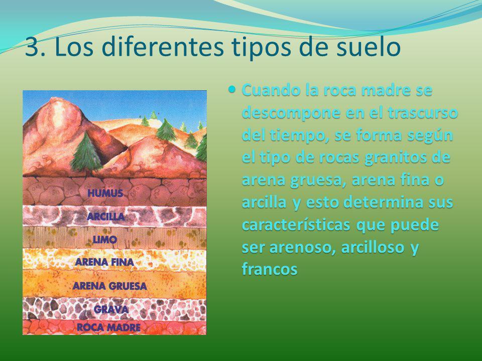 3. Los diferentes tipos de suelo Cuando la roca madre se descompone en el trascurso del tiempo, se forma según el tipo de rocas granitos de arena grue