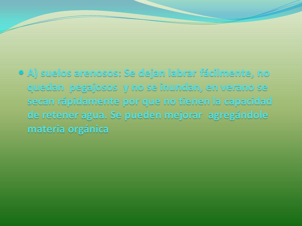 A) suelos arenosos: Se dejan labrar fácilmente, no quedan pegajosos y no se inundan, en verano se secan rápidamente por que no tienen la capacidad de