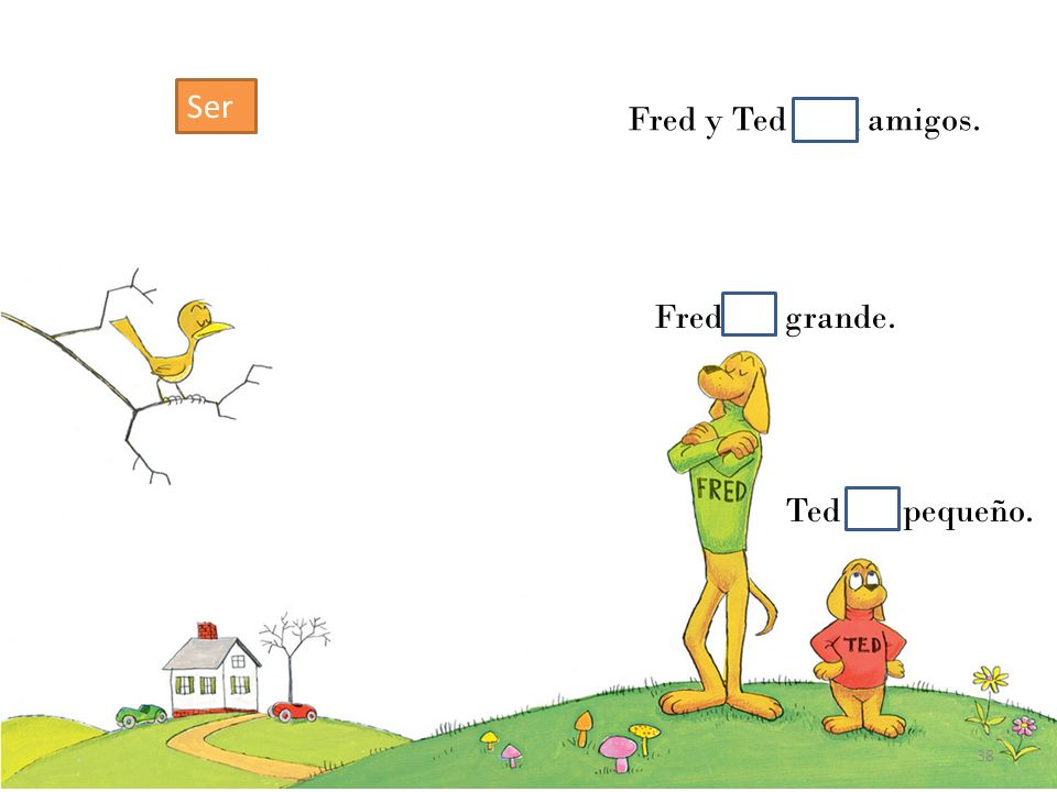 Fred y Ted eran amigos. Ted era pequeño. Fred era grande. 38 Ser
