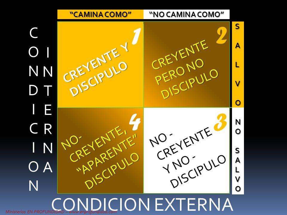 INTERNAINTERNA CONDICION EXTERNA S A L V O NONOSALVOSALVONONOSALVOSALVO CAMINA COMO NO CAMINA COMO CREYENTE Y DISCIPULO NO - CREYENTE Y NO - DISCIPULO
