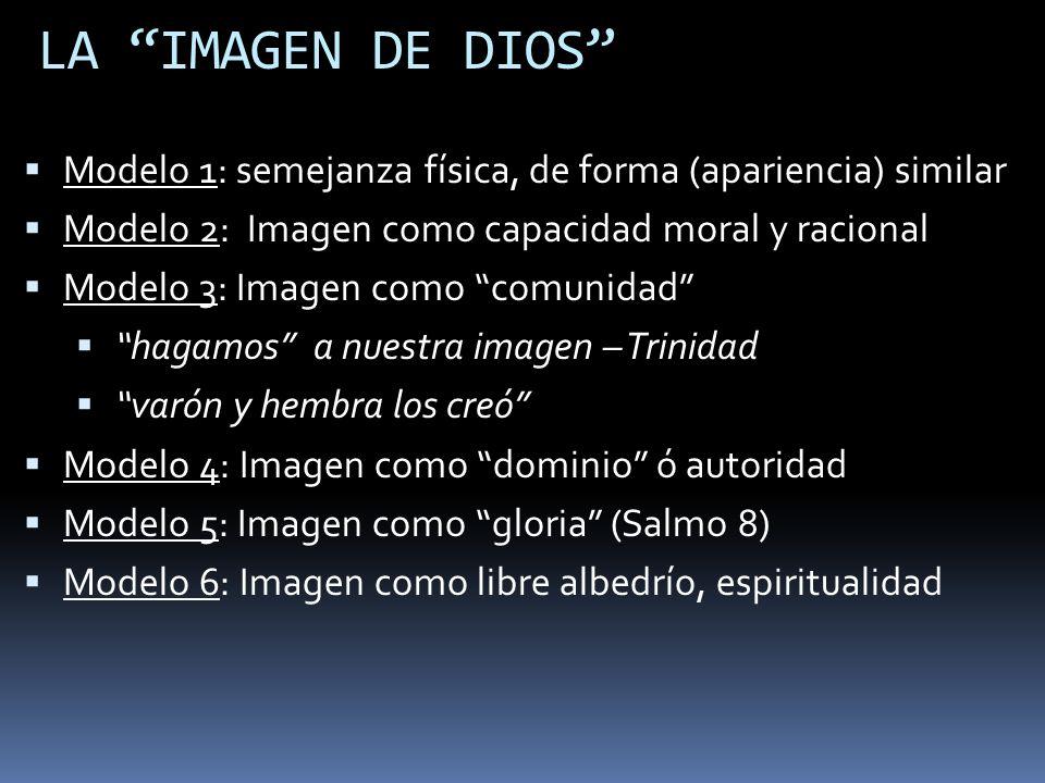 LA IMAGEN DE DIOS Modelo 1: semejanza física, de forma (apariencia) similar Modelo 2: Imagen como capacidad moral y racional Modelo 3: Imagen como com