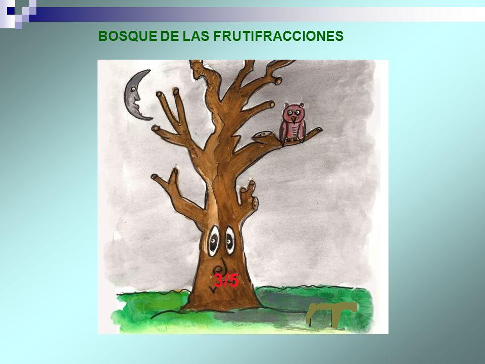 3/5 BOSQUE DE LAS FRUTIFRACCIONES