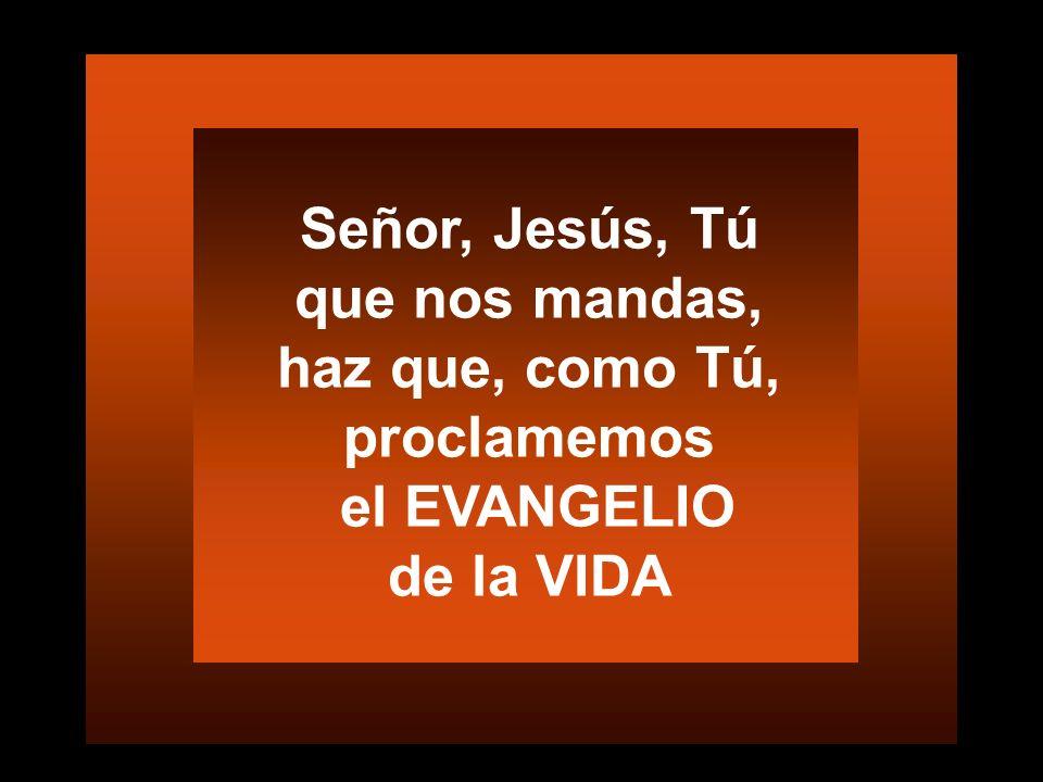 Comprendí que el Cristo del altar estaba en los enfermos encadenados Gregoire Ahogbonon 23 junio 2012 Predicad libertando