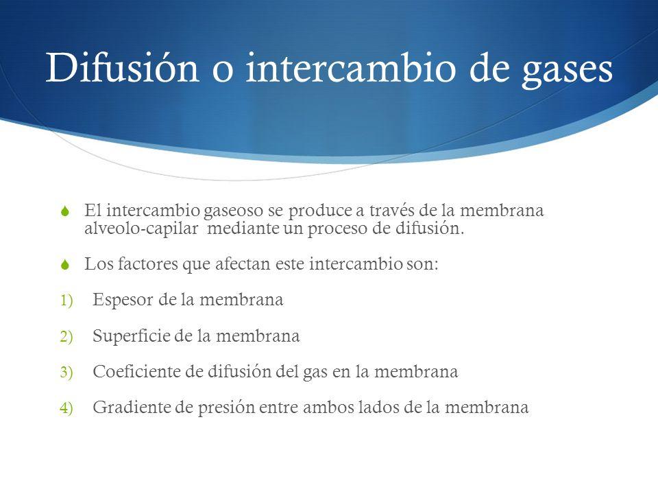 Difusión o intercambio de gases El intercambio gaseoso se produce a través de la membrana alveolo-capilar mediante un proceso de difusión.