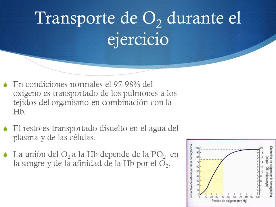 Transporte de O 2 durante el ejercicio En condiciones normales el 97-98% del oxigeno es transportado de los pulmones a los tejidos del organismo en combinación con la Hb.