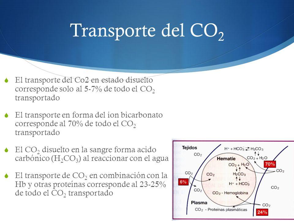 El transporte del Co2 en estado disuelto corresponde solo al 5-7% de todo el CO 2 transportado El transporte en forma del ion bicarbonato corresponde al 70% de todo el CO 2 transportado El CO 2 disuelto en la sangre forma acido carbónico (H 2 CO 3 ) al reaccionar con el agua El transporte de CO 2 en combinación con la Hb y otras proteínas corresponde al 23-25% de todo el CO 2 transportado Transporte del CO 2