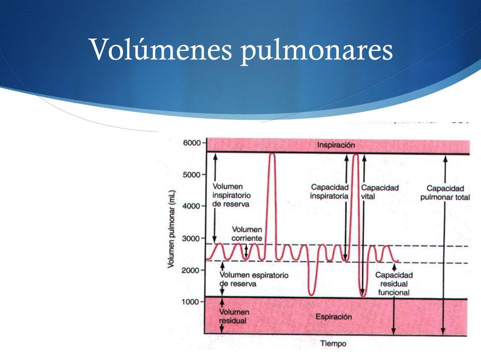Volúmenes pulmonares