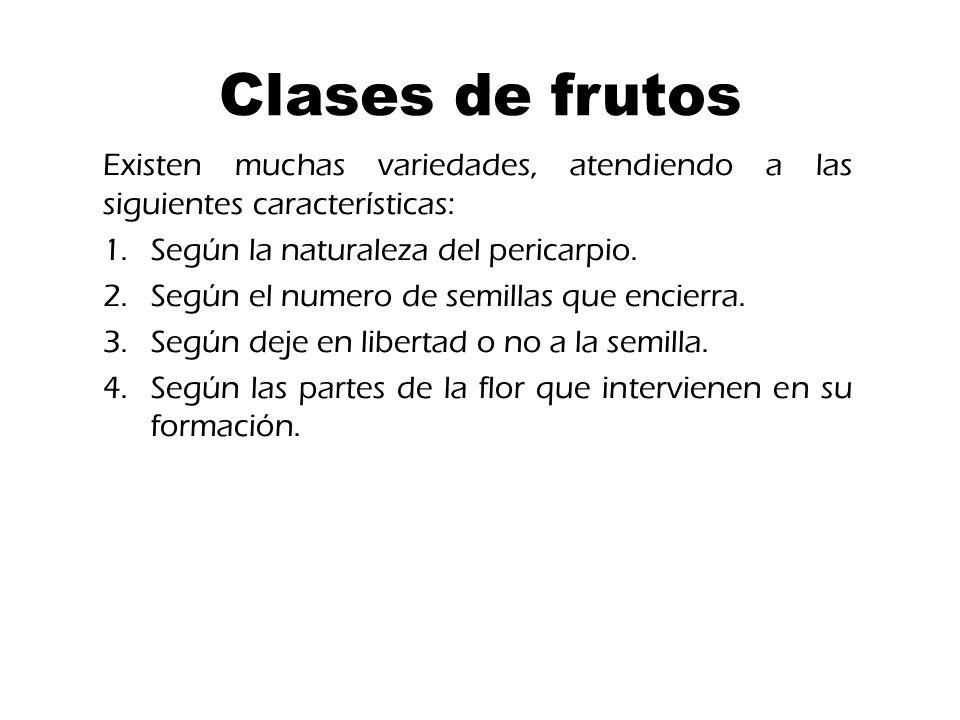 Clases de frutos Existen muchas variedades, atendiendo a las siguientes características: 1.Según la naturaleza del pericarpio.