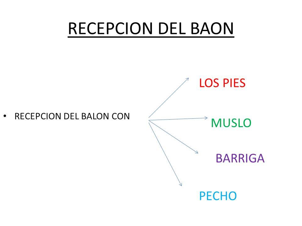 RECEPCION DEL BAON RECEPCION DEL BALON CON LOS PIES PECHO BARRIGA MUSLO