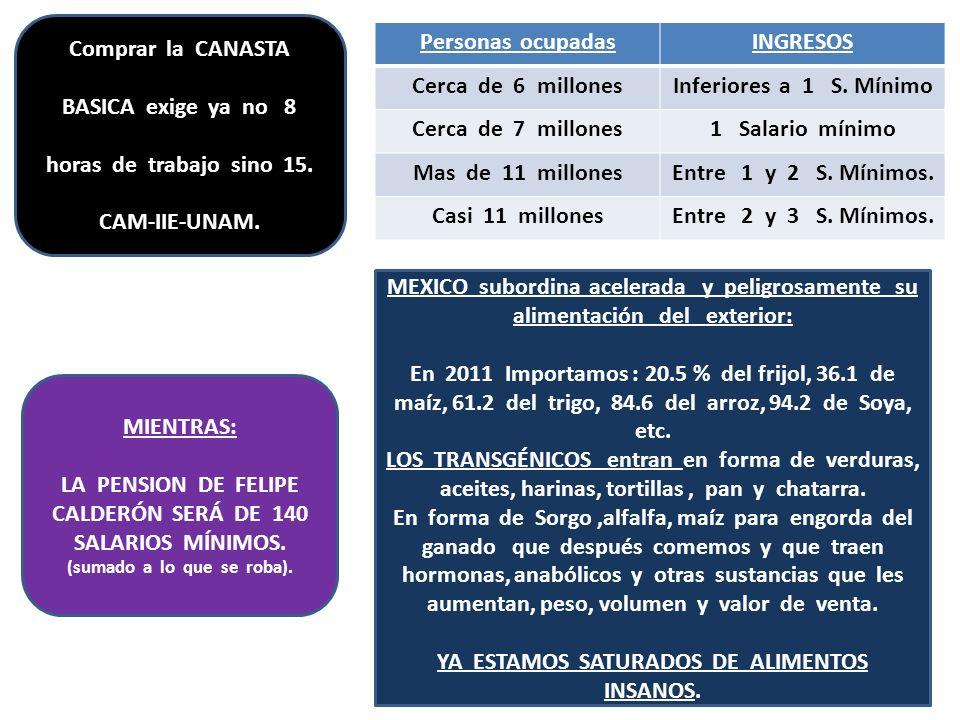 Comprar la CANASTA BASICA exige ya no 8 horas de trabajo sino 15. CAM-IIE-UNAM. Personas ocupadasINGRESOS Cerca de 6 millonesInferiores a 1 S. Mínimo